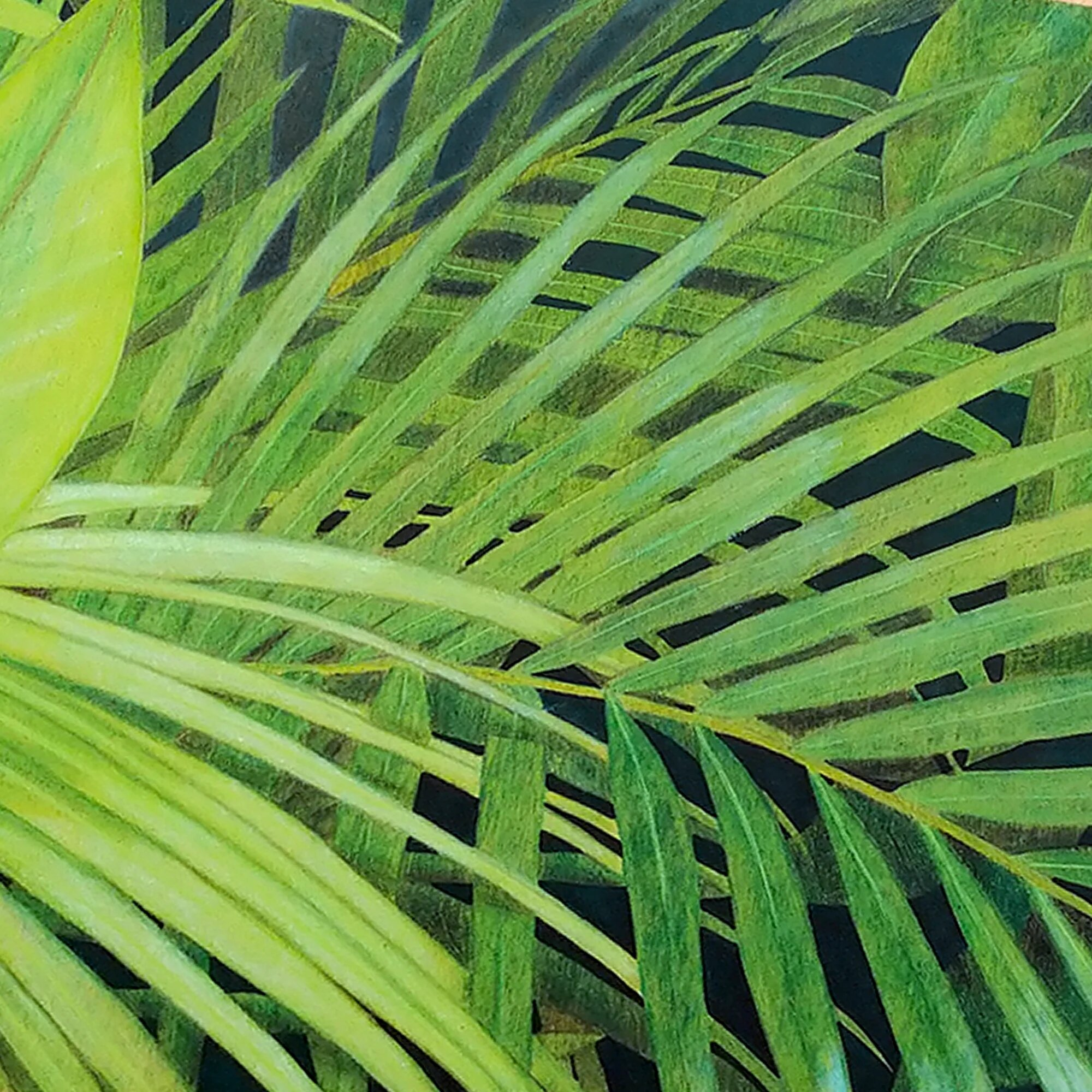 tableau Nature Mauricienne, feuillage vert tropical zoom